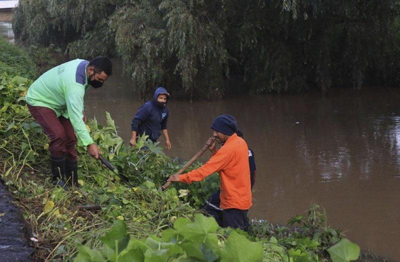 Limpieza río